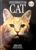 Encyclopedia of the Cat, Angela Sayer